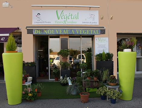 La boutique - Vegetal Fleurs Jardins - Allauch - Fleuriste