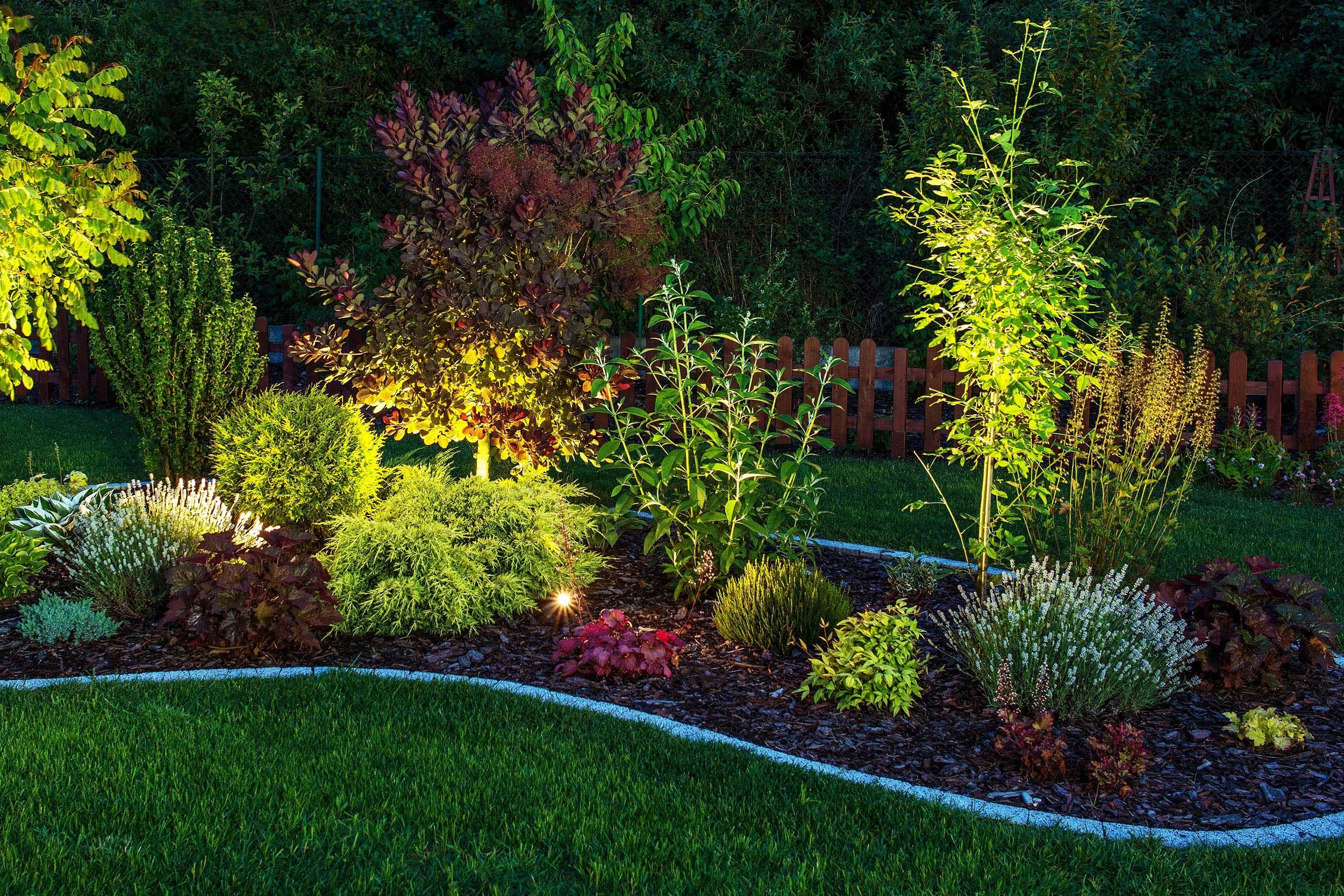 Beautiful Jardin De Fleurs Saidia Images - Fernandogalaviz.us ...