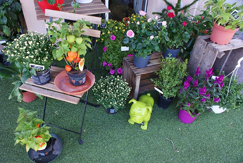 La boutique - Vegetal Fleurs et Jardins - Allauch - Fleuriste - Solange - Bouquet - livraison - 5
