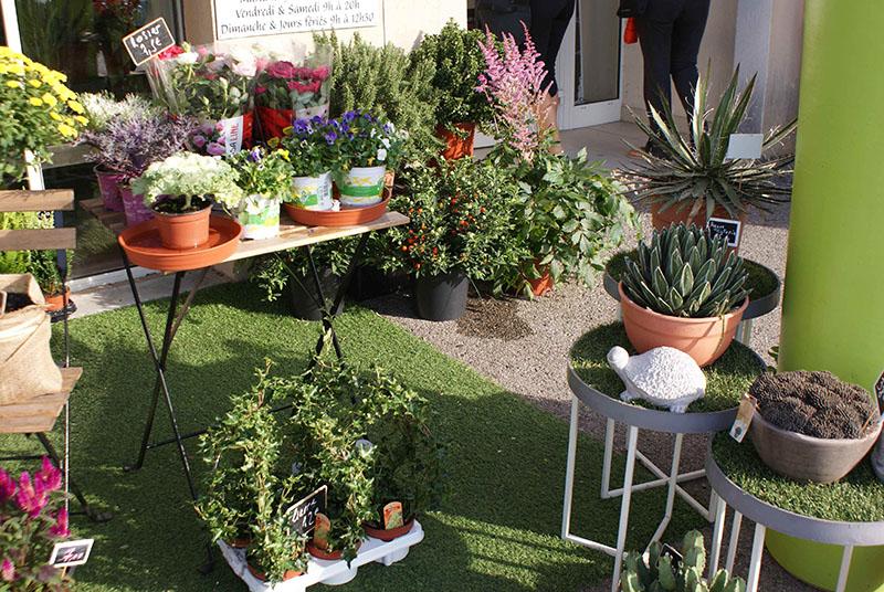 La boutique - Vegetal Fleurs et Jardins - Allauch - Fleuriste - Solange - Bouquet - livraison - 6
