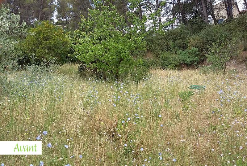 Jardinier - Savoir-Faire -Vegetal-Fleurs-Jardins-Allauch-2